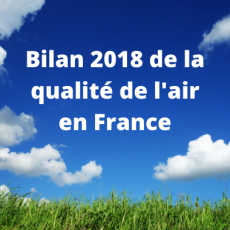 Bilan 2018 de la qualité de l'air en France